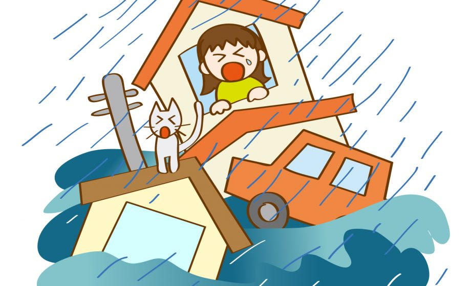 日本に『避難命令』は無い   株式会社イエステージkai: 和歌山の不動産 ...